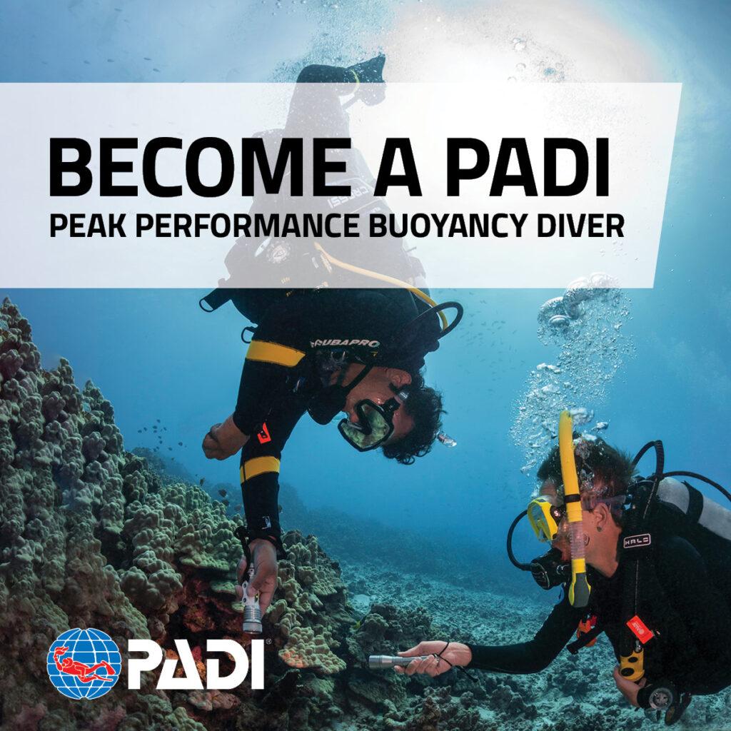Peak Performance Buoyancy Specialty (PPB)